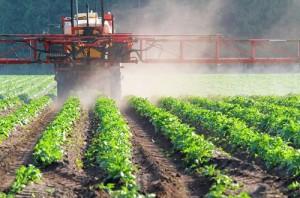 Brasil ocupa o 44º lugar no consumo de agrotóxicos